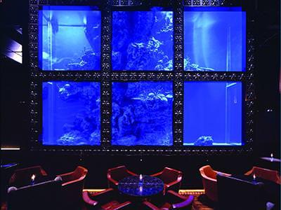 【恵比寿 バイト・アルバイト募集☆】イタリアン ラグシス aqua restaurant & bar LUXIS sub1 image