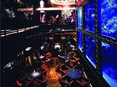 【恵比寿 バイト・アルバイト募集☆】イタリアン ラグシス aqua restaurant & bar LUXIS sub4 image